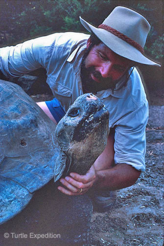 It was 1988 and we were exploring the amazing Galapagos Islands off the coast of Ecuador. Lonesome George was hanging out at the Charles Darwin Research Station on Santa Cruz Island. He loved to have his neck rubbed.
