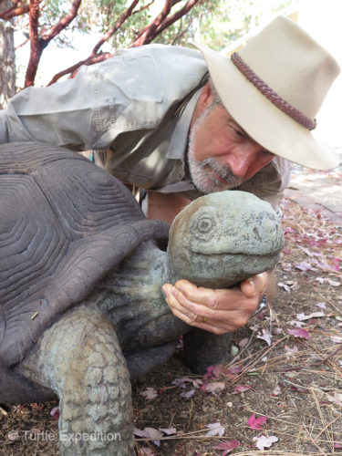 Our own Lonesome George II does not seem to mind having his neck rubbed either.