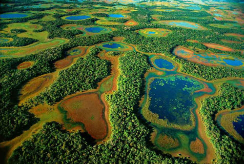 Encompassing between 54,000 and 75,000 sq mi, the Pantanal contains various sub-regional ecosystems, each with distinct hydrological, geological and ecological characteristics.